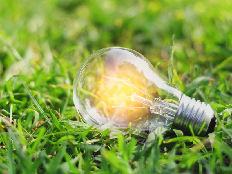 concept eco light bulb on green grass with idea saving power energy